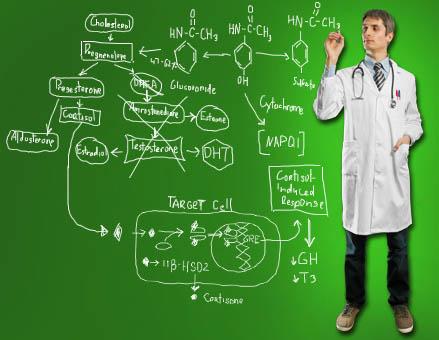 Новая парадигма медицины
